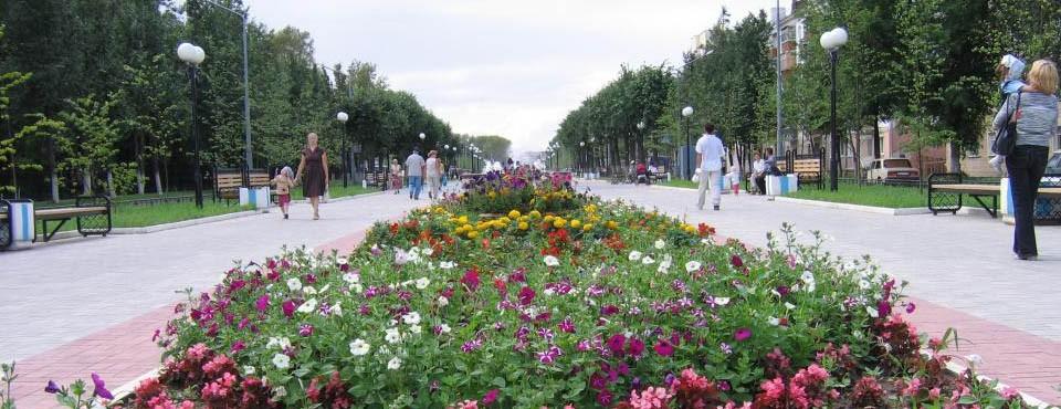 Выполнение всех видов озеленительных работ, уборка территорий парков, скверов, бульваров и придорожных газонов